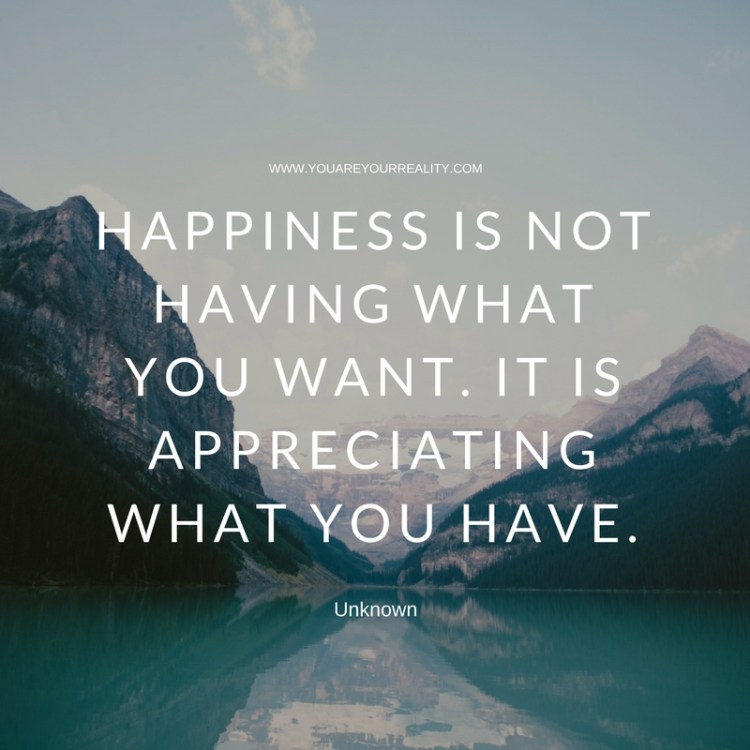 Happiness is not having what you want. But appreciating what you have.