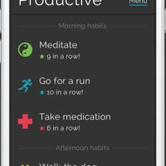 The Productive Habits and Daily Goals Tracker App Review