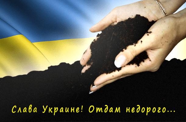 Кабинет Министров Украины внес на рассмотрение Верховной Рады законопроект, в котором предлагается исключить