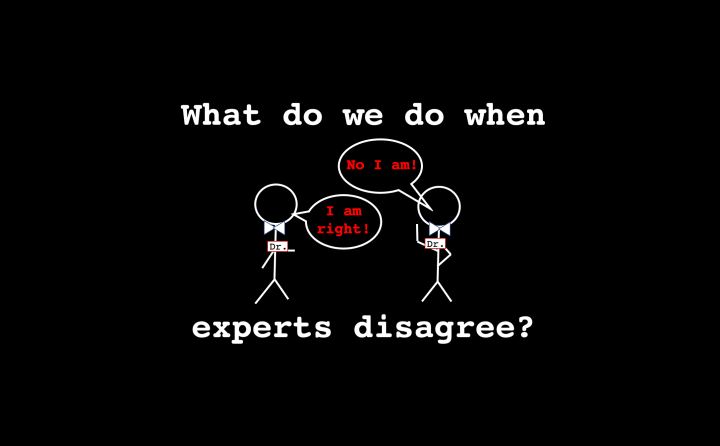 What do we do when experts disagree?