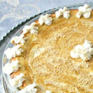 Elegant Swirled Pumpkin Cheesecake, perfect for any celebration you absolutely have to serve this at Thanksgiving!