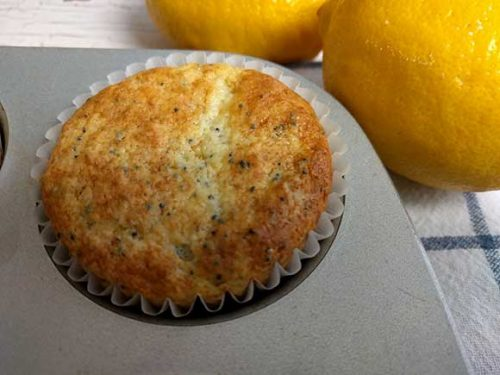 freshly baked lemon poppyseed muffin in muffin cup shows two fresh lemons in background