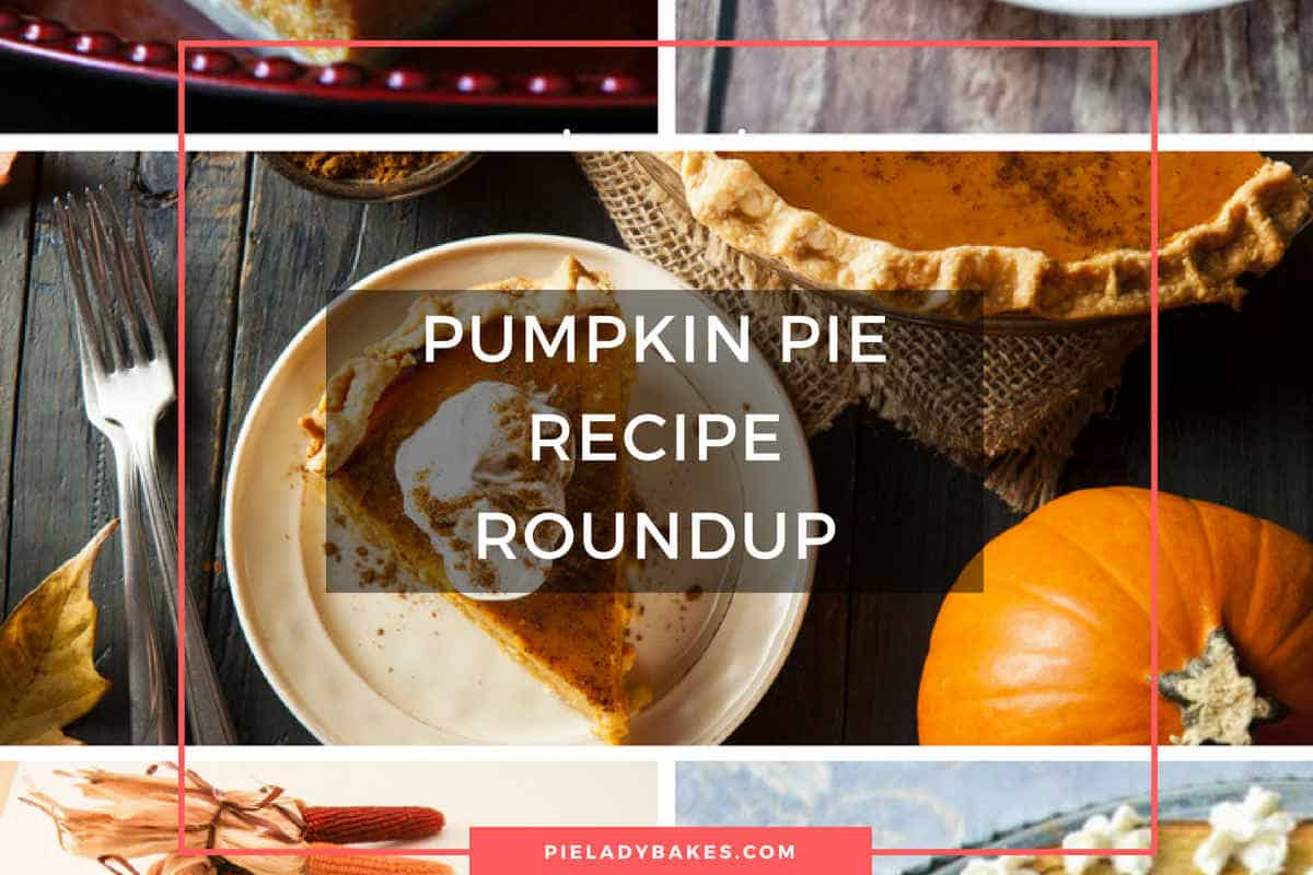 Pumpkin Pie Recipe Roundup | Pie Awesomeness Awaits
