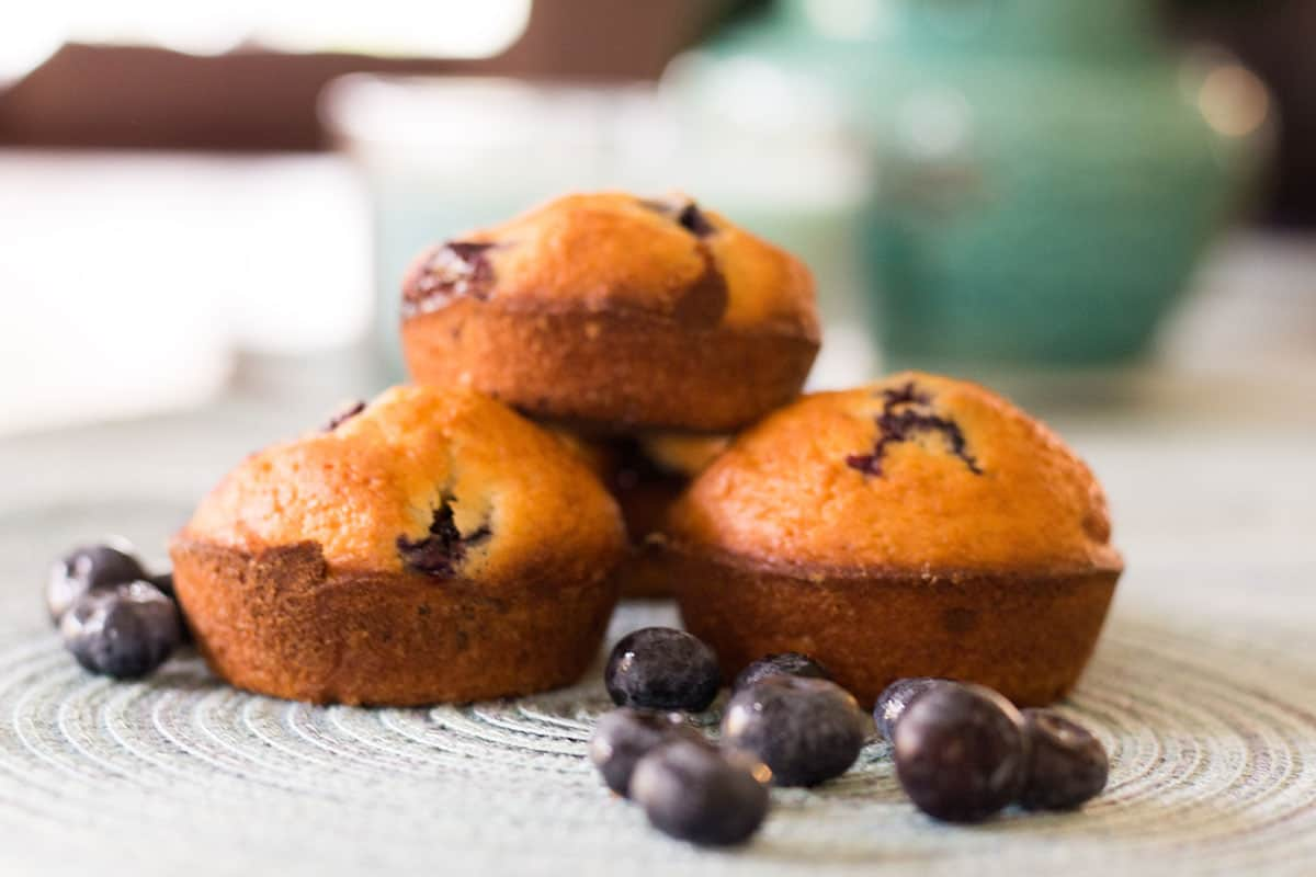 three blueberry muffins on a placemat with fresh blueberries sprinkled around them, blue vase in the background