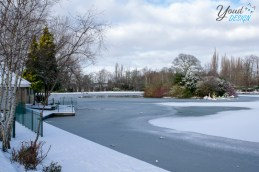 Saltwell Park Winter