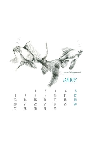 january-by-youdesignme-iphone-5