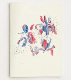 iris_notebook