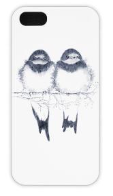 birds case