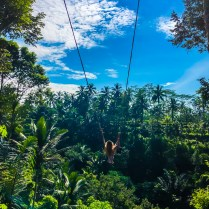 ubud swing Best Budget Travel Guide For Bali