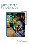6 Benefits of a Plant-Based Diet (Health, Environment, Athletes)