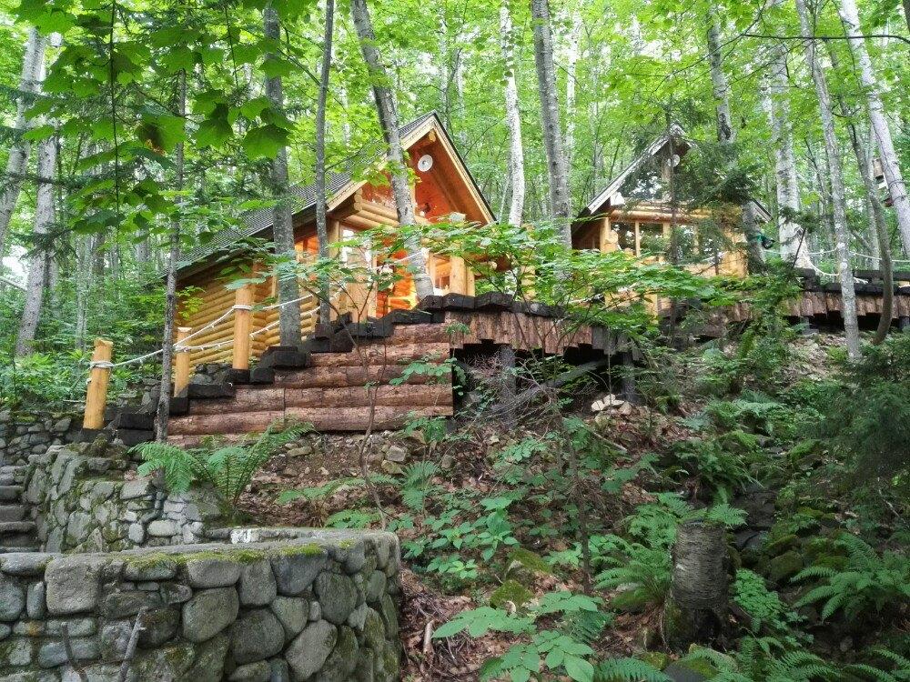 【攜程攻略】富良野森之時計咖啡屋景點,安靜的森林,清新的空氣,精致的小木屋,小朋友說,我是森林小 ...