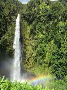Water fall in the jungle.