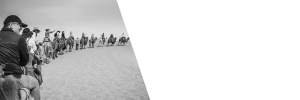 Group of travelers riding on camels on sand.