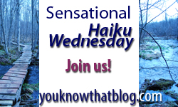 Sensational Haiku Wednesday