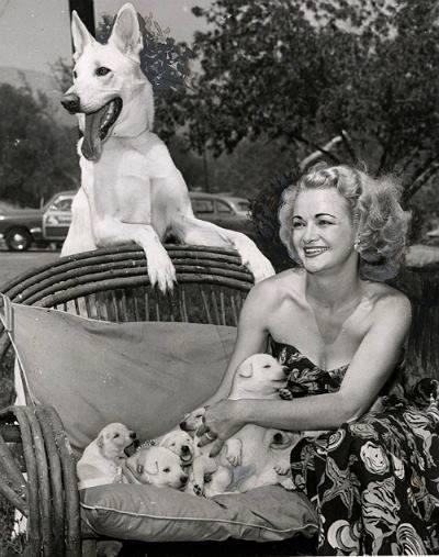 vips Dorothy Crider, attrice e allevatrice, con Chinook, 1951