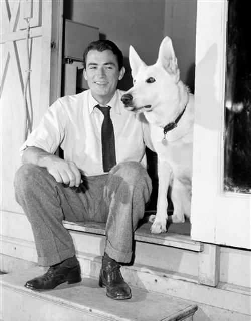 vips Gregory Peck