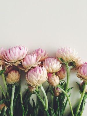 April Inspiration via youmademelikeyou.com