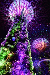 Super Trees at Gardens by the Bay Singapore via youmademelikeyou.com