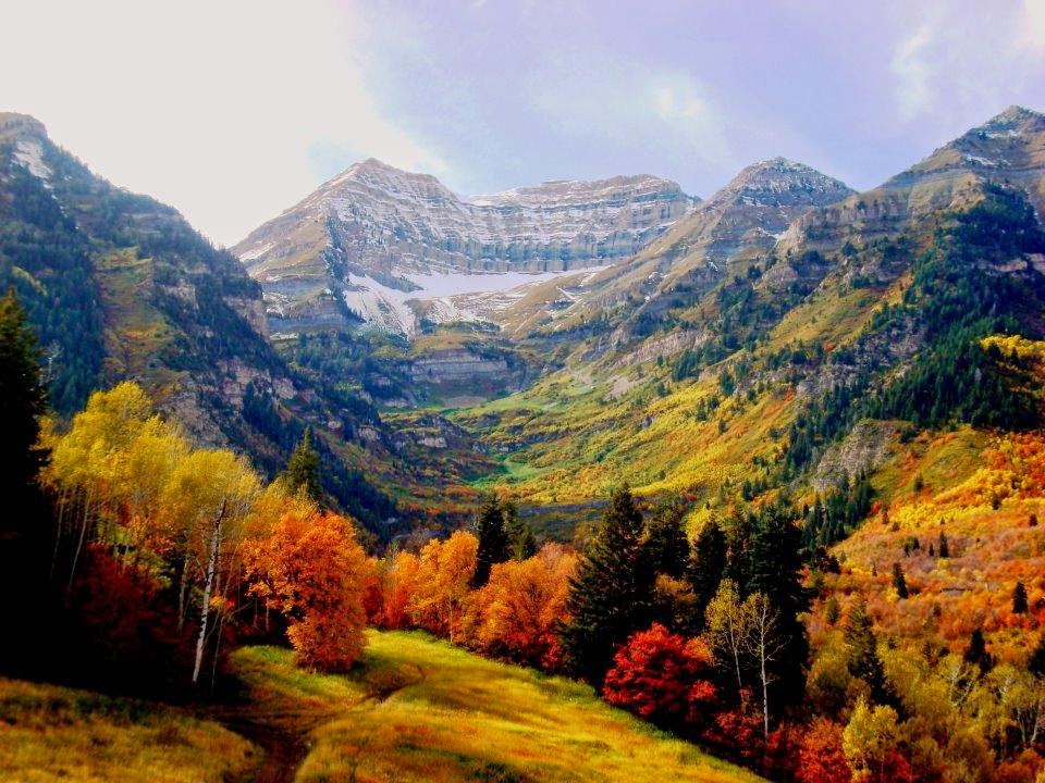 Fall Colors Wallpaper New England Which Would You Choose Fall Foliage Edition