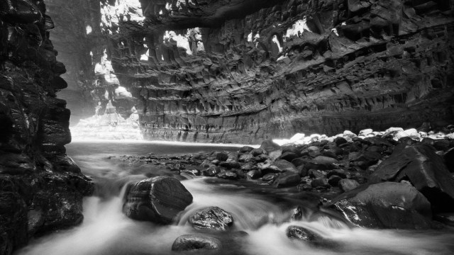 Black And White Nature HD Wallpaper For Pinterest