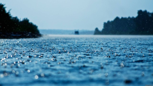 Nature Rain HD Wallpaper For Desktop