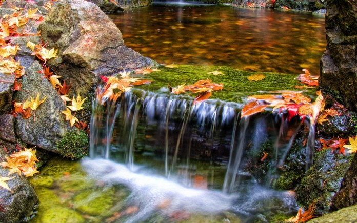 Waterfall Nature HD Wallpaper For PC