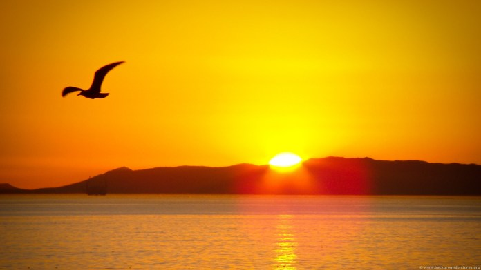 Sunrise HD Wallpaper For WideScreen