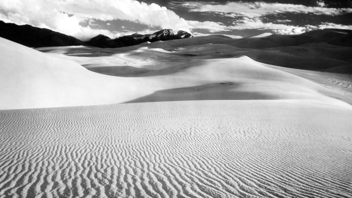 Black And White Nature HD Wallpaper For Mobile