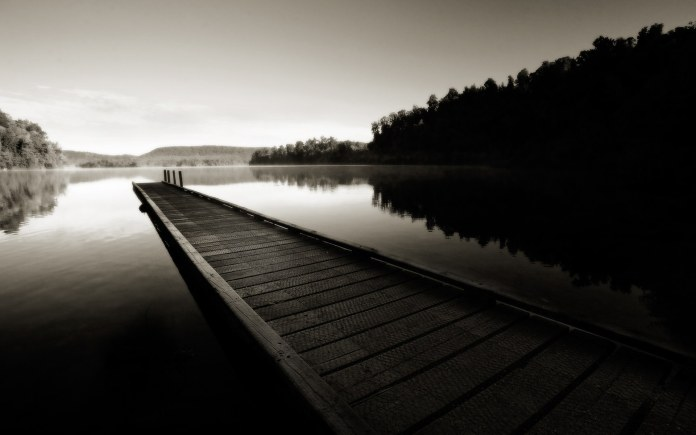 Black And White Nature HD Wallpaper For Android