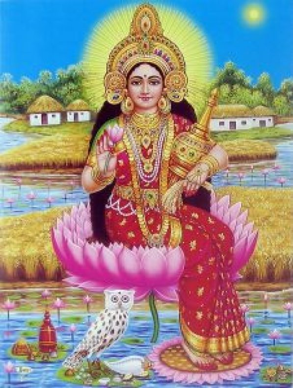 mata laxmi with owl