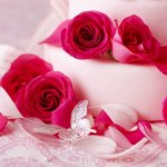World's Top 100 Beautiful Flowers Images Wallpaper Photos Free Download