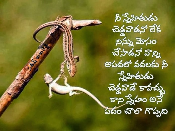 true friendship day quotes in telugu language