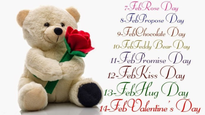 teddy bear day beautiful images