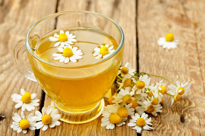 chamomile tea benefits For Hair and Health