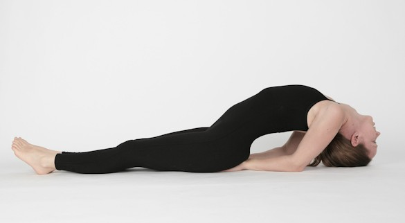 Fish Pose(Matsyasana)