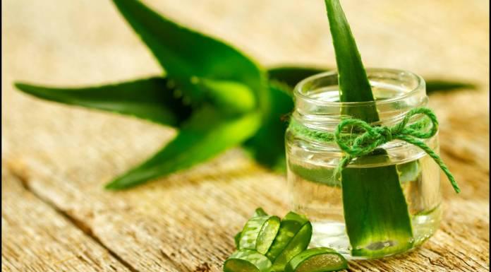 aloe vera gel for face Aloe Vera Juice for Skin Aloe Vera gel For hairs