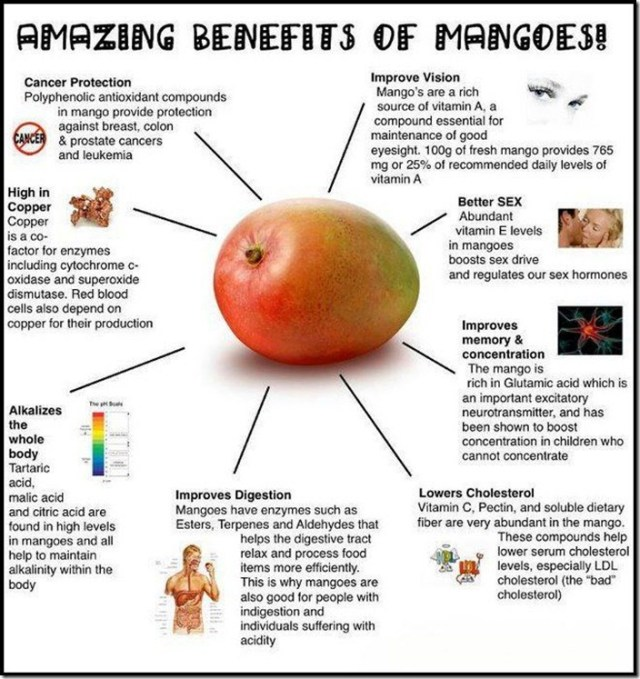 uses of mango fruit