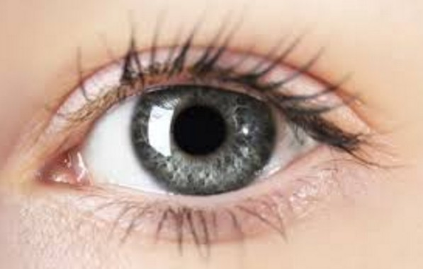 Coriander Seeds For Eye Care