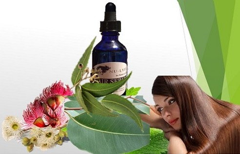 Eucalyptus Oil Improved Hair Health