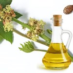 10 Effective Ways To Use Castor Oil For Hair Growth