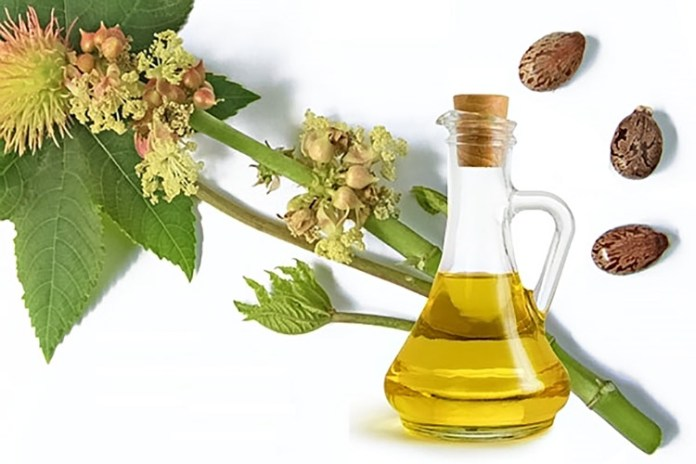 benefits of castor oil for hair