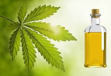 neem tree oil benefits