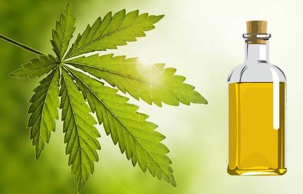 neem tree oil benefits
