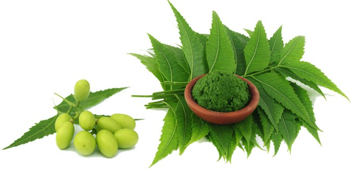 neem oil uses