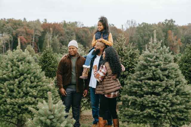 positive black family preparing for christmas on tree farm