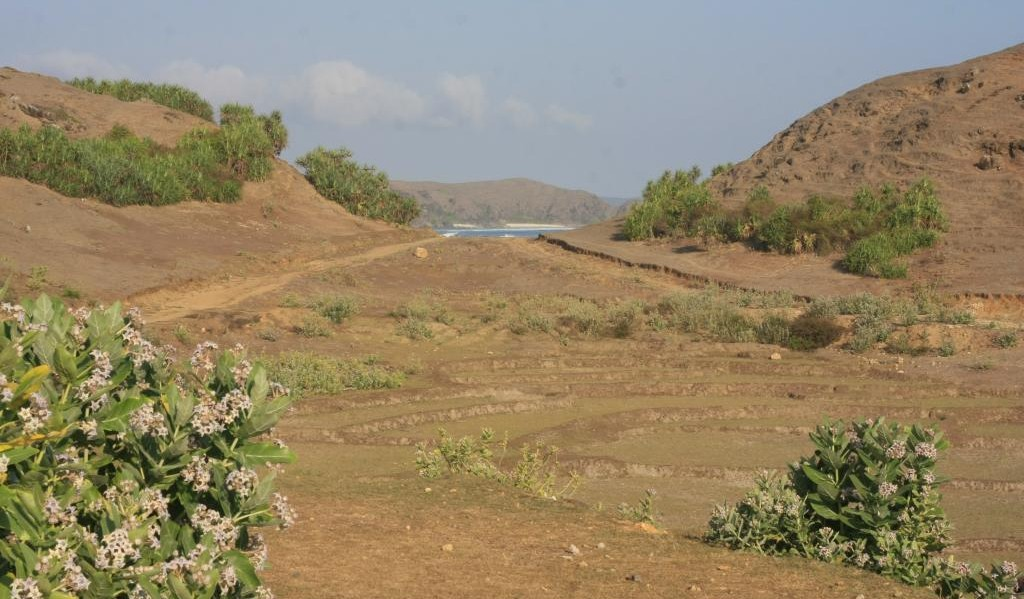 Arid hill with sea in background