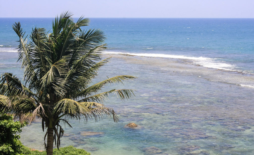 Galle reef