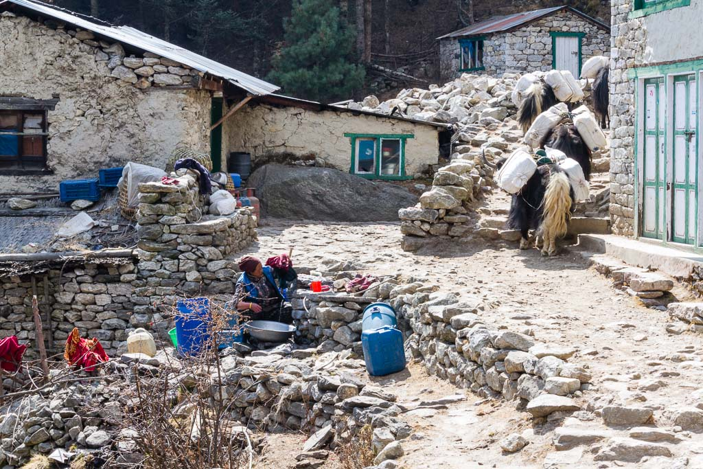 A typical village in the Khumbu