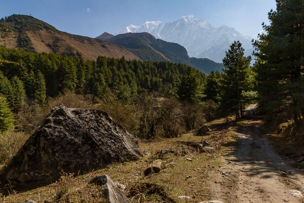 The trail from Larjung to Ghorepani