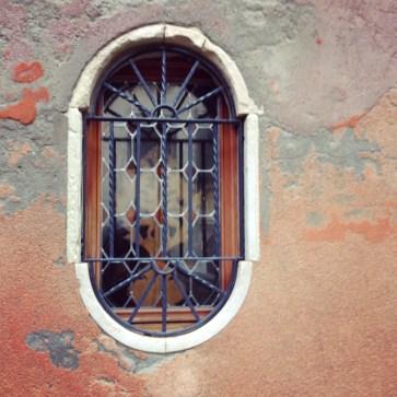 @youneedacocktail on instagram - Venice, window